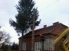 gardenluk-wycinka-drzew-07
